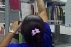 biblioteca-10
