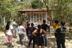 Jardim-Botânico-do-Ceará-2